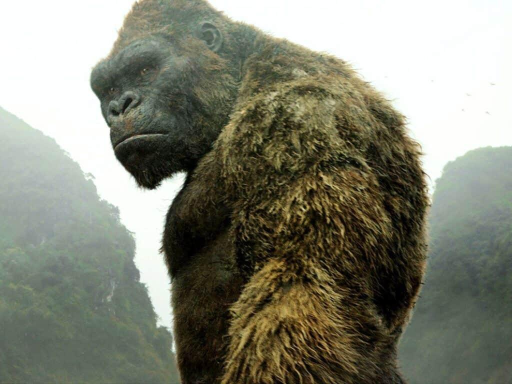 King Kong A Ilha da Caveira